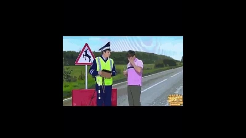 Анектод про дальнобойщика,проститутки и гаишника