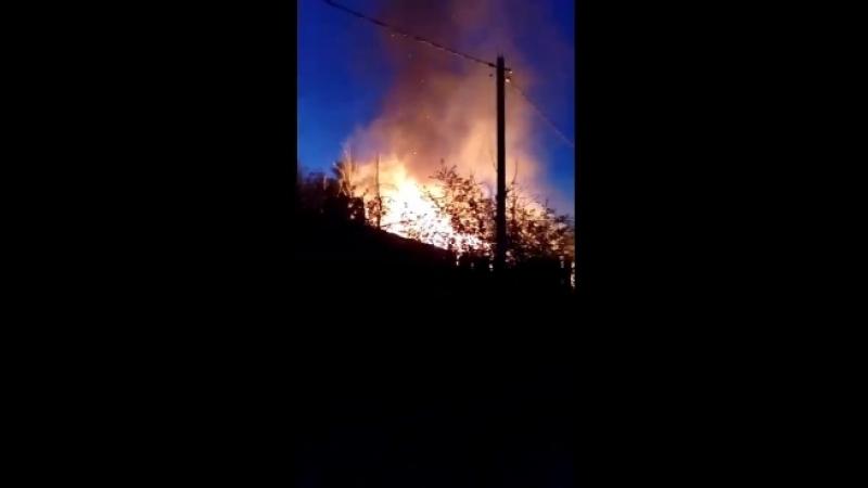 SOS подожгли дом с собаками!