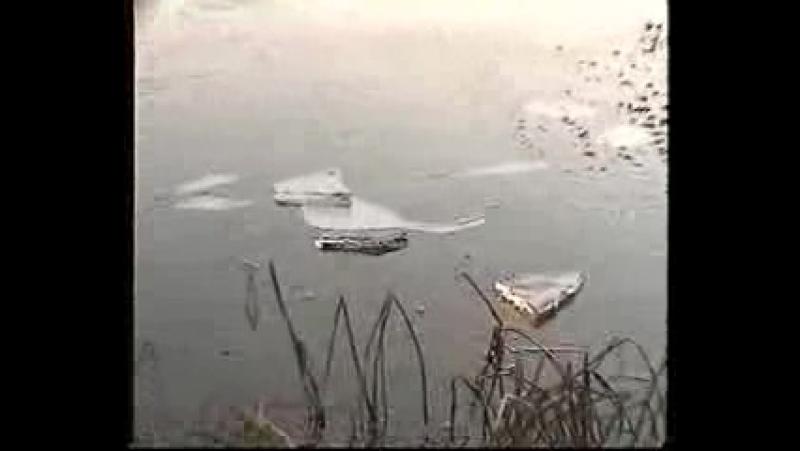 001_певец пророк сан бой возмущён неубранным мусором осенью на банном озере в ярцеве.