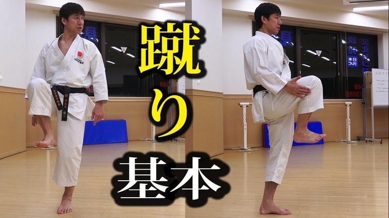 中達也が教える前蹴りの基本(白帯ワールド)How to Mae Geri by Naka sensei, Shiro-obi World