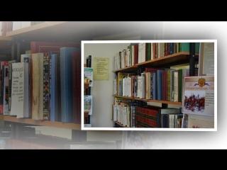 Тишанская модельная библиотека