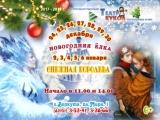 Новогодняя премьера в Театре Кукол! Снежная Королева, Дед Мороз и Снегурочка ждут ребятишек у новогодней ёлки!