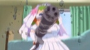 BRUTAL DOOM anime version