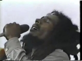 Bob Marley - No Woman, No Cry (Live 1979)