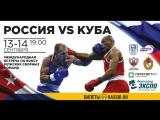 Здоровая Нация на международной матчевой встрече по боксу Россия-Куба.