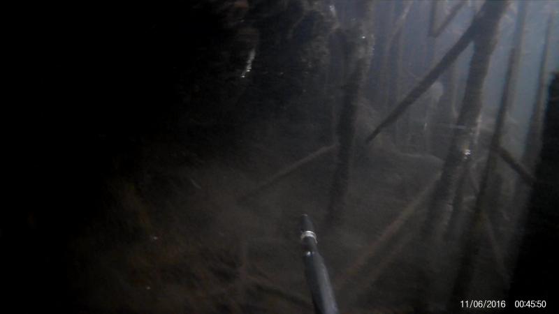 заинск вода теплая.лягушки огромные не спят.под водой как в припяти хорошо что костюм уже был мокрым.рыба забилась вся в камыш.