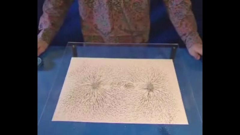 Получение картины силовых линий поля от пары магнитов