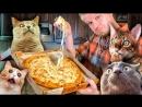 Oblomoff Ямм Пицца ОНО ТЯНЕТСЯ Славный Обзор