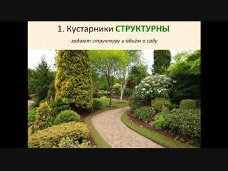Марафон по кустарникам_день 1