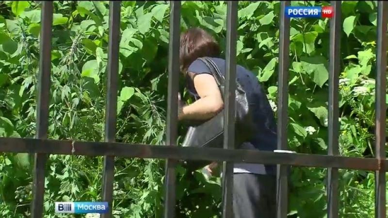Вести Москва • Химки лишились бесплатных пляжей