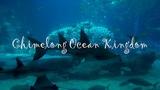 Самый большой аквариум в мире Chimelong Ocean Kingdom Алексей Рыжов