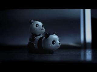 Онлайн видео спаривание сексмедведей панды
