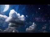 2 Тишина Спокойствие в мире, полном шума часть 2 (NikOsho)Тит Нат Хан