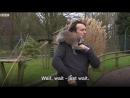 Репортёра «атаковали» лемуры во время съёмки  в зоопарке