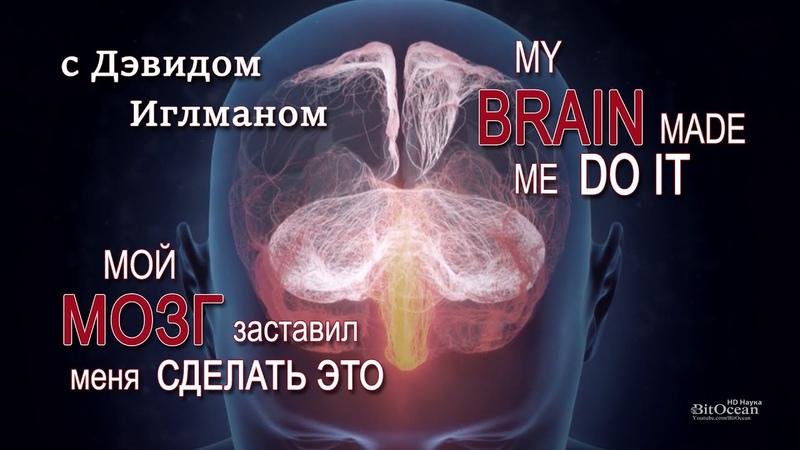 Мой мозг заставил меня сделать это | с Дэвидом Иглманом | My brain made me do it || HD 1080p vjq vjpu pfcnfdbk vtyz cltkfnm 'nj