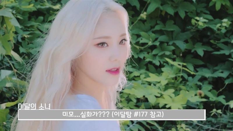 이달의소녀탐구 377 (LOONA TV 377)