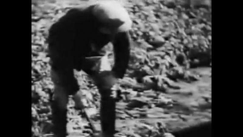 Ich für dich, du für mich (1934)