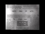 Талмуд: Гои (не евреи) должны рассматриваться евреями не как люди, а как животные подлежащие истреблению.