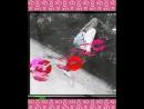 Video_2018_09_20_17_17_03.mp4