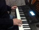 Richard Sanderson - Reality на синтезаторе Casio CTK-6200
