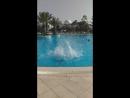 Сальто в бассейн 2,50 м. 😄😁