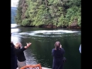 Классная рыбалка хорошо что не клюнул