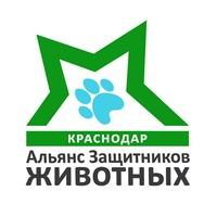 Логотип Альянс Защитников Животных Краснодар