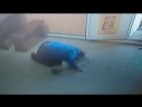 Пьяный мужик разбил бутылку водки в магазине и пил с пола