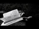 Анастасия Лебедь- На осколках звездопада