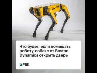 Что будет, если помешать собаке-роботу открыть дверь