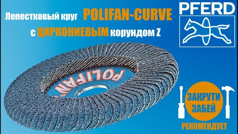 Лепестковый круг POLIFAN-CURVE с цирконием