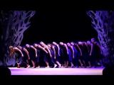 Отчетный концерт DS VEGAS FAMILY Контемпорари , группа Куликовой Ани