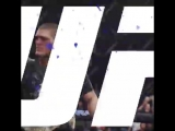 UNDEFEATED. UNDISPUTED. LIGHTWEIGHT CHAMPION OF THE WORLD! UFC229