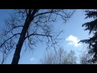 релакс облачко