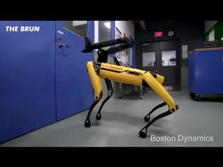 Робот и Манипулятор