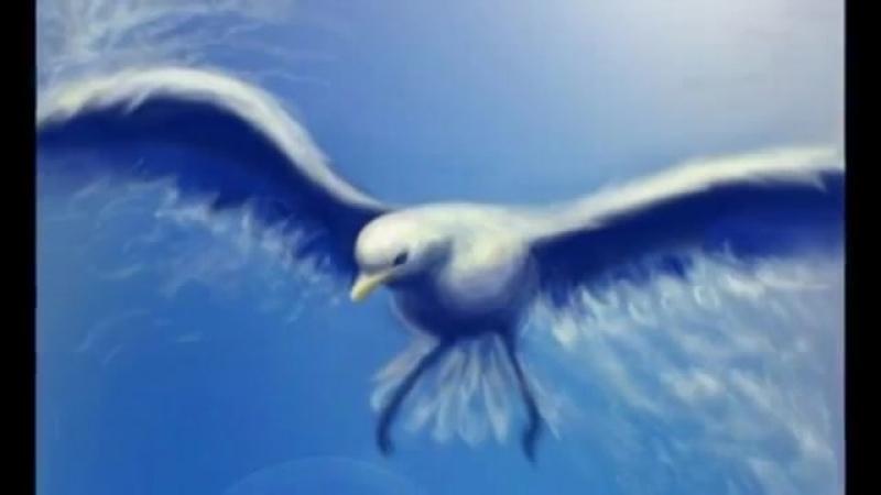 Чайки успокойтесь сердцу больно.. ( 360 X 640 ).mp4