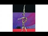 SLs FLEXIBLE Aerobics Gymnastics