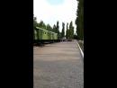Евгения Сазонова Live