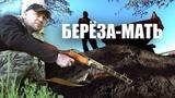 Бизнес Schwein  TV29.RU (Северодвинск)