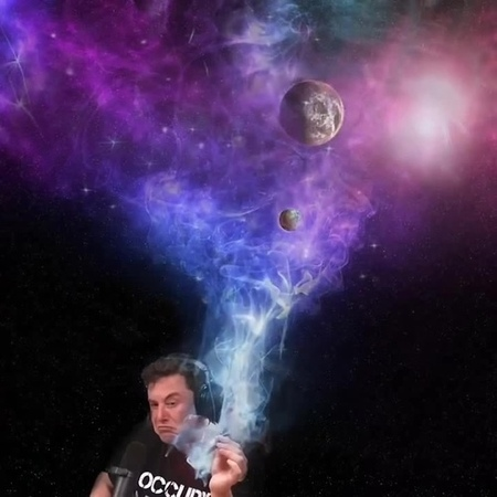 Elon s universe