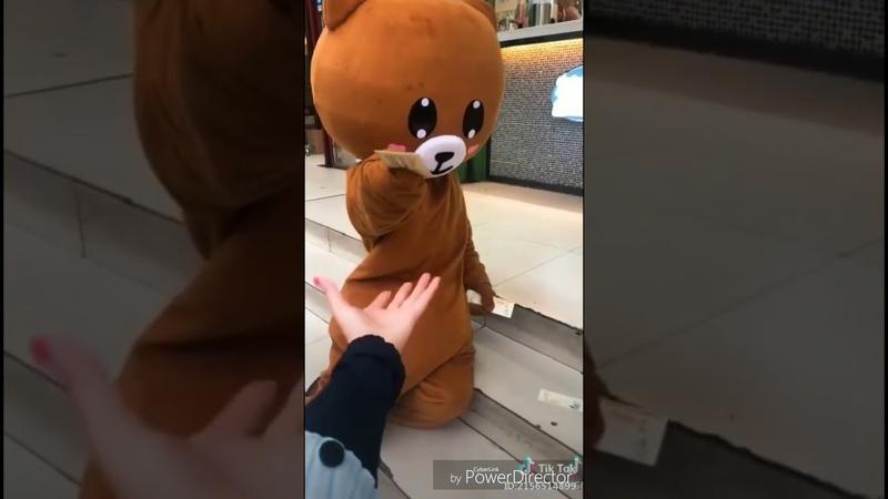 Con gấu lầy lội nhất Tik Tok [panda cute] 1