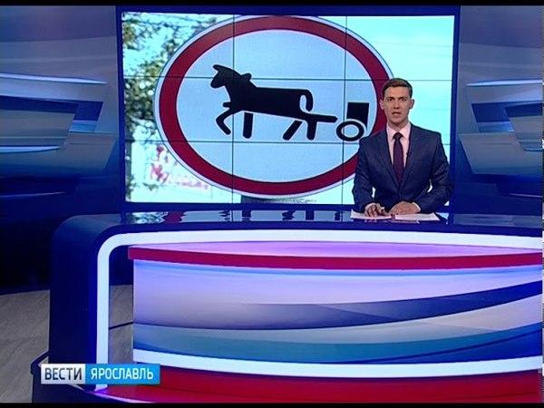 В Ярославле ужесточат контроль за нелегальным катанием на лошадях