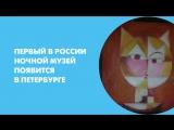 Первый в России ночной музей появится в Петербурге