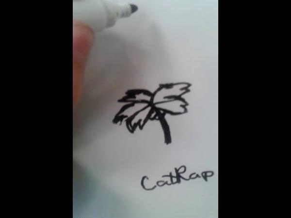 КэтРэпуська нарисовала ПАЛЬМУ на доске во время перемены