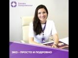 ЭКО - ПРОСТО И ПОДРОБНО | Клиника Екатерининская
