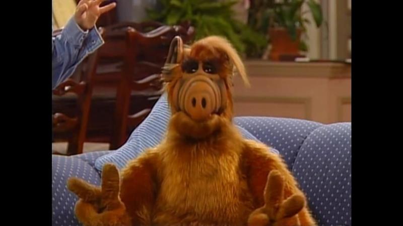 Alf Quote Season 2 Episode 26_Ответ