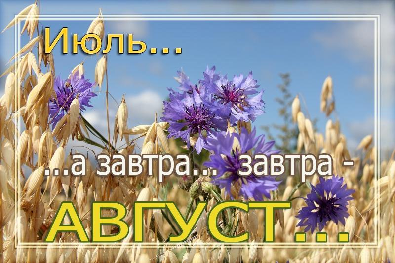 https://pp.userapi.com/c830608/v830608771/16196b/mG8UvPNt2I4.jpg