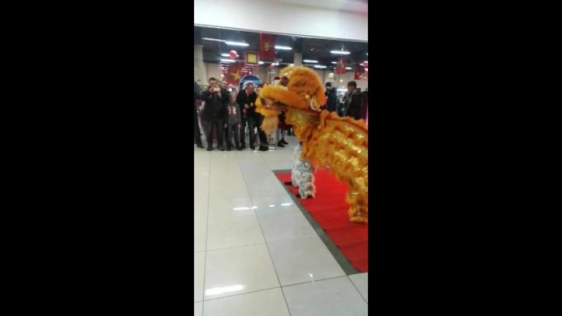Танец дракона в МФЦ Ханой-Москвв