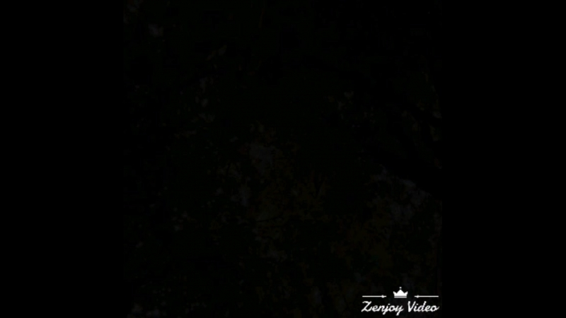 Video_2018_08_07_15_11_53.mp4