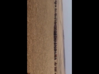 22.02.18ж ақырғы салым Тілла палуан Саңғыл Пәзілбек атамның атымен